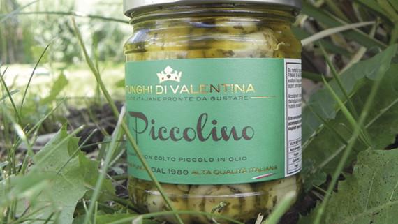 I Funghi di Valentina - Il Piccolino